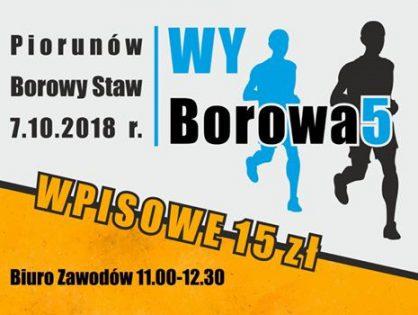 WyBorowa5 - zawody sportowe