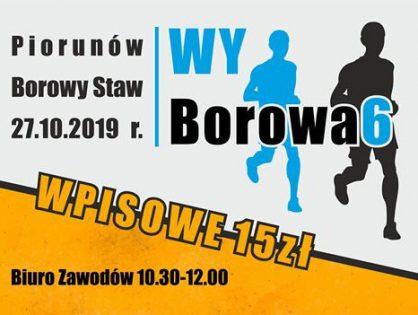 WyBorowa6 - zawody sportowe